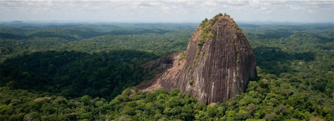 Tourisme en Guyane : entre visite et gastronomie